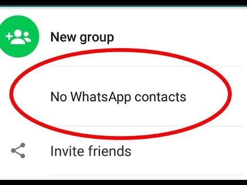 contacts not showing whatsapp